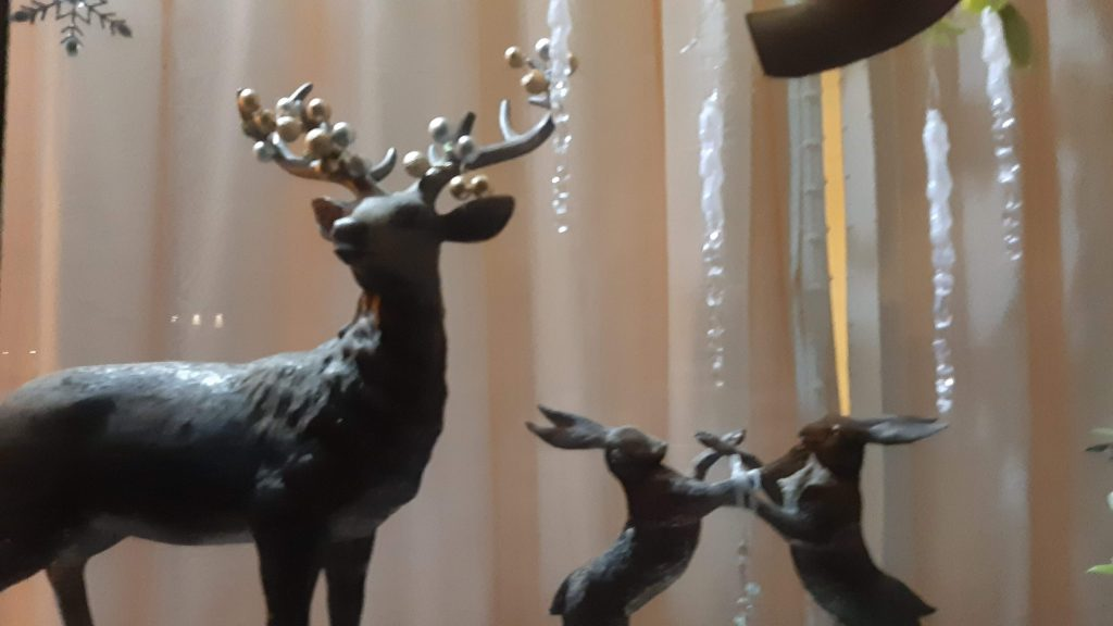 Close up of stag